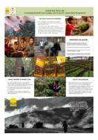 Tea Value Chain Development
