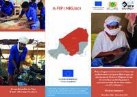 NIGER - Projet d'appui à la formation et à l'insertion professionnelle des jeunes filles et garçons des régions de Zinder et d'Agadez en vue de contribuer au développement socio-économique de ces deux régions « A-FIP | NIG/801 » : Résultats marquants